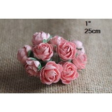 CC - 30pc Bourbon Roses