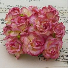 WOC -  LARGE 2-TONE CHAMPANGE PINK WILD ROSES 40mm  - 25pc