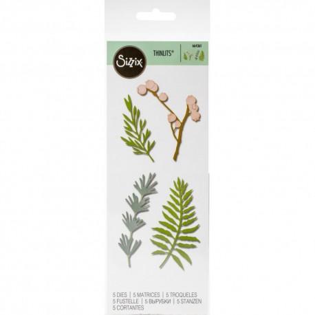 Sizzix Thinlits Dies 5/Pkg - Natural Leaves
